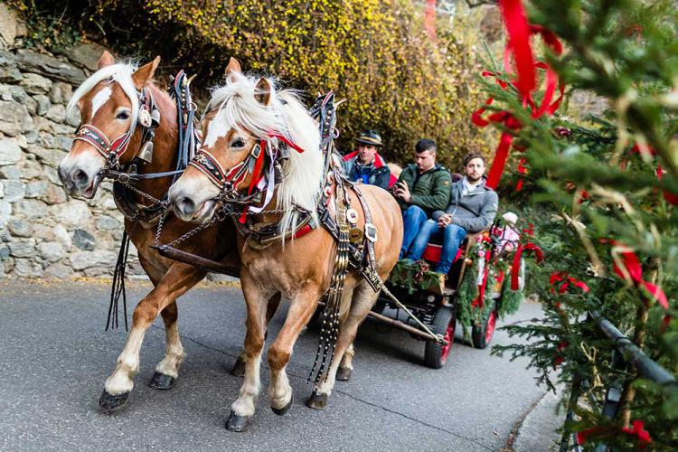 Horse cart ride to the Castle Advent